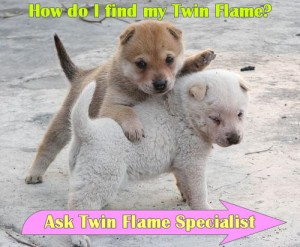 How do I find my Twin Flame