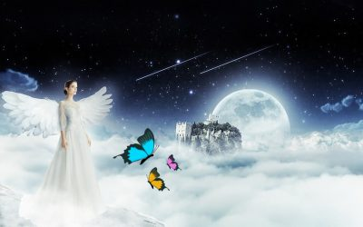 What Does It Mean When You See A Butterfly – Spiritual Meaning