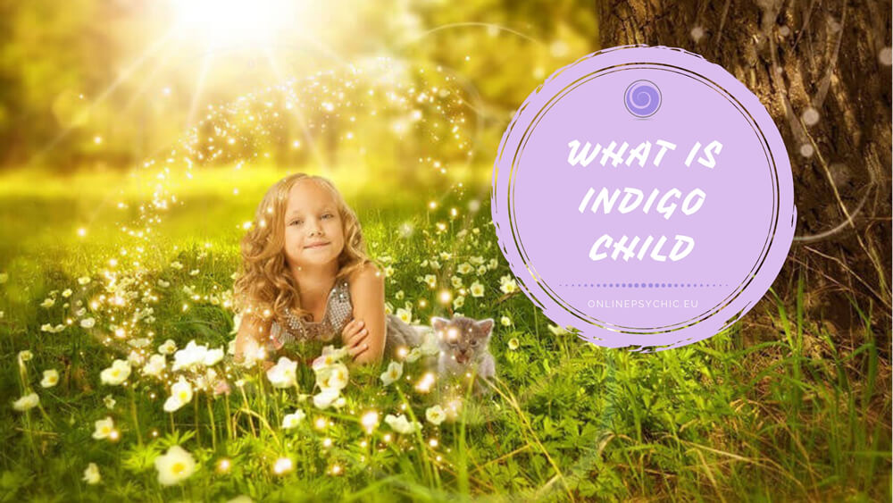 what is an indigo child