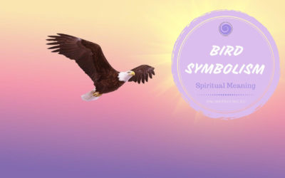 Bird Symbolism and Their Meanings in Spirituality