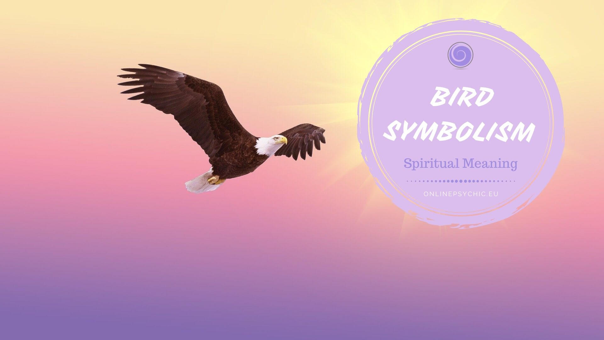 spiritual meaning of birds