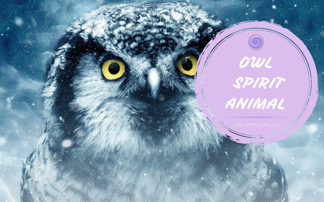Owl Symbolism and Their Meanings in Spirituality